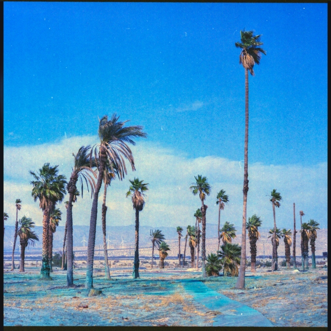 palmsprings-golfcourse-photography-art-landscape-expiredfilm-joe-segre-sugar-velvia